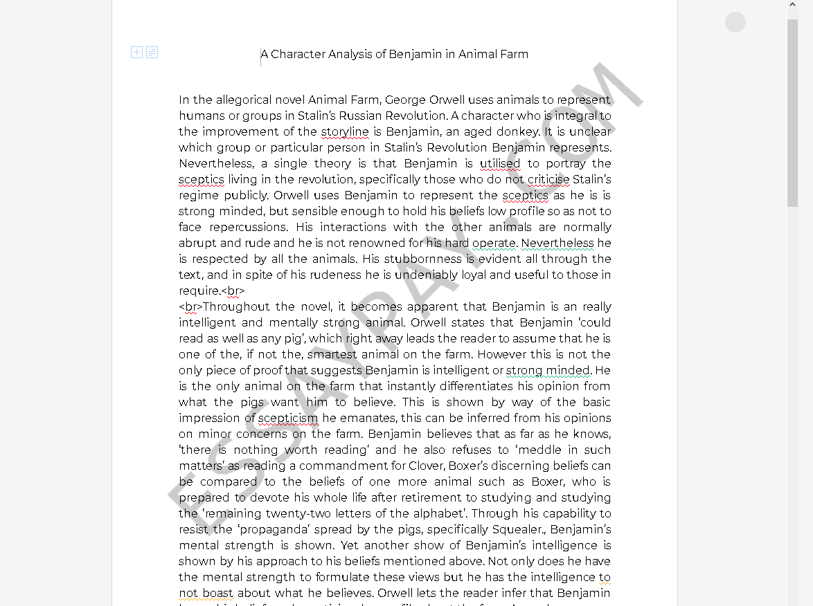 A Character Analysis Of Benjamin In Animal Farm Essay Example 1269 Words Essaypay