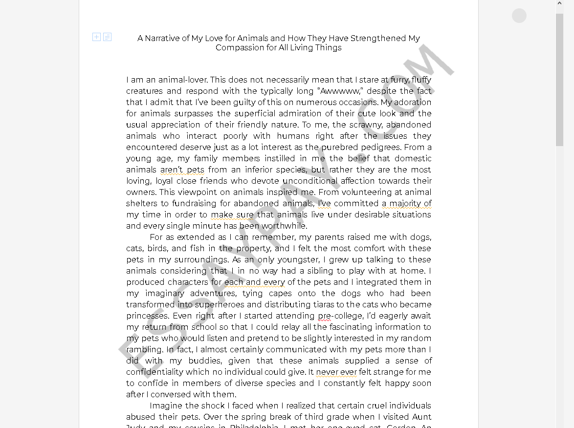 Argumentative essay college students