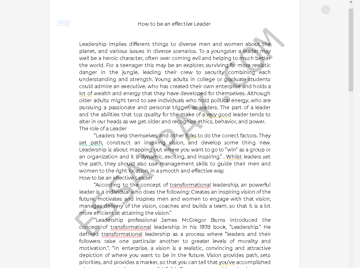 effective leadership essay - Free Essay Example