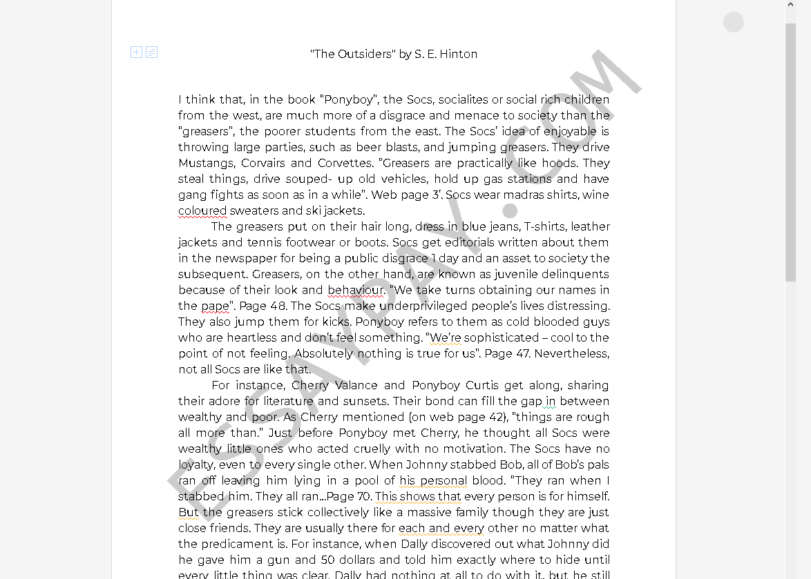 essays on the outsiders - Free Essay Example