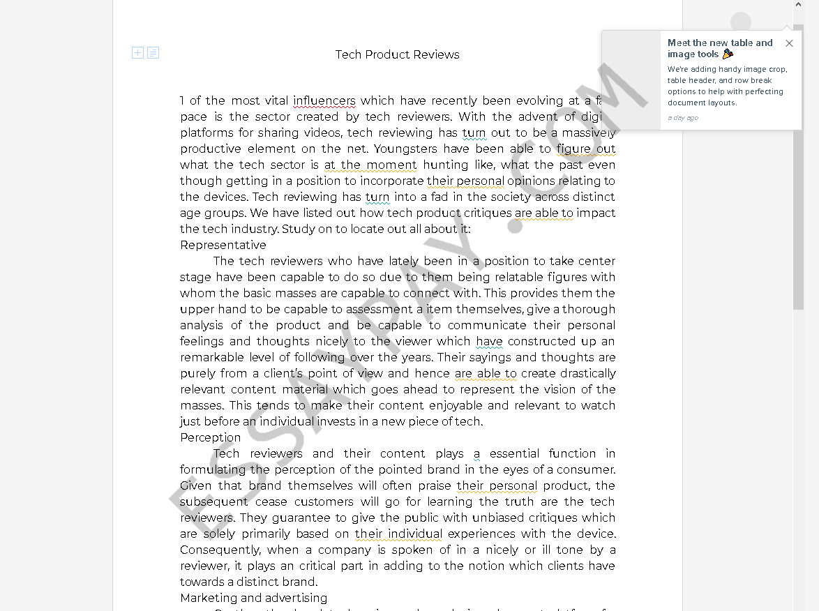 example of product review essay - Free Essay Example