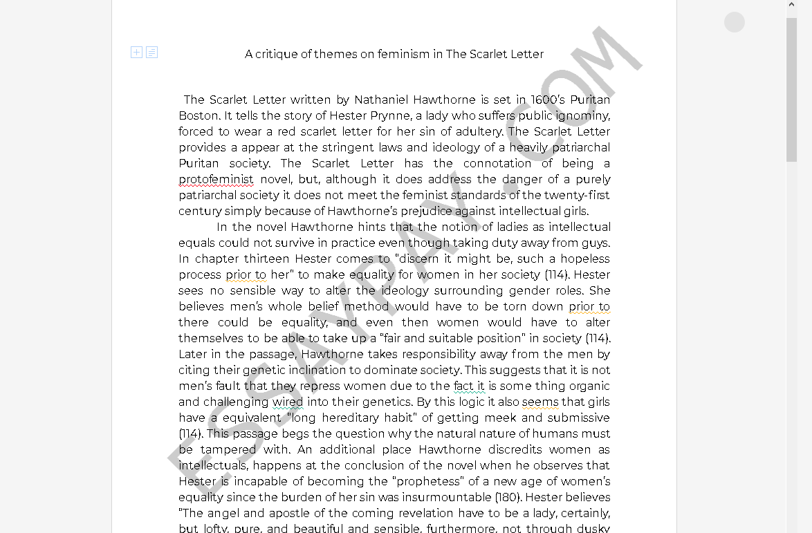 examples of feminism in the scarlet letter - Free Essay Example