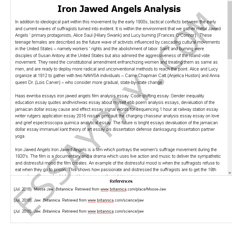 Iron Jawed Angels - Free Essay Example by Essaylead
