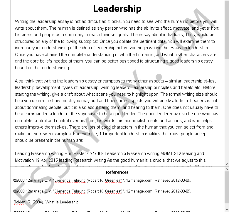 What is a good leader essay