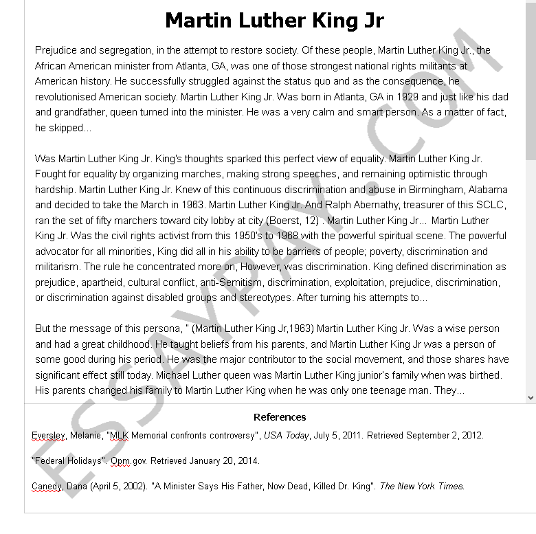 martin luther king jr  - Free Essay Example