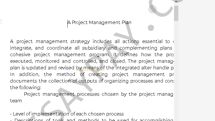 project management essay - Free Essay Example