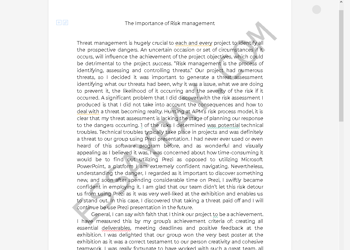 risk management essay - Free Essay Example