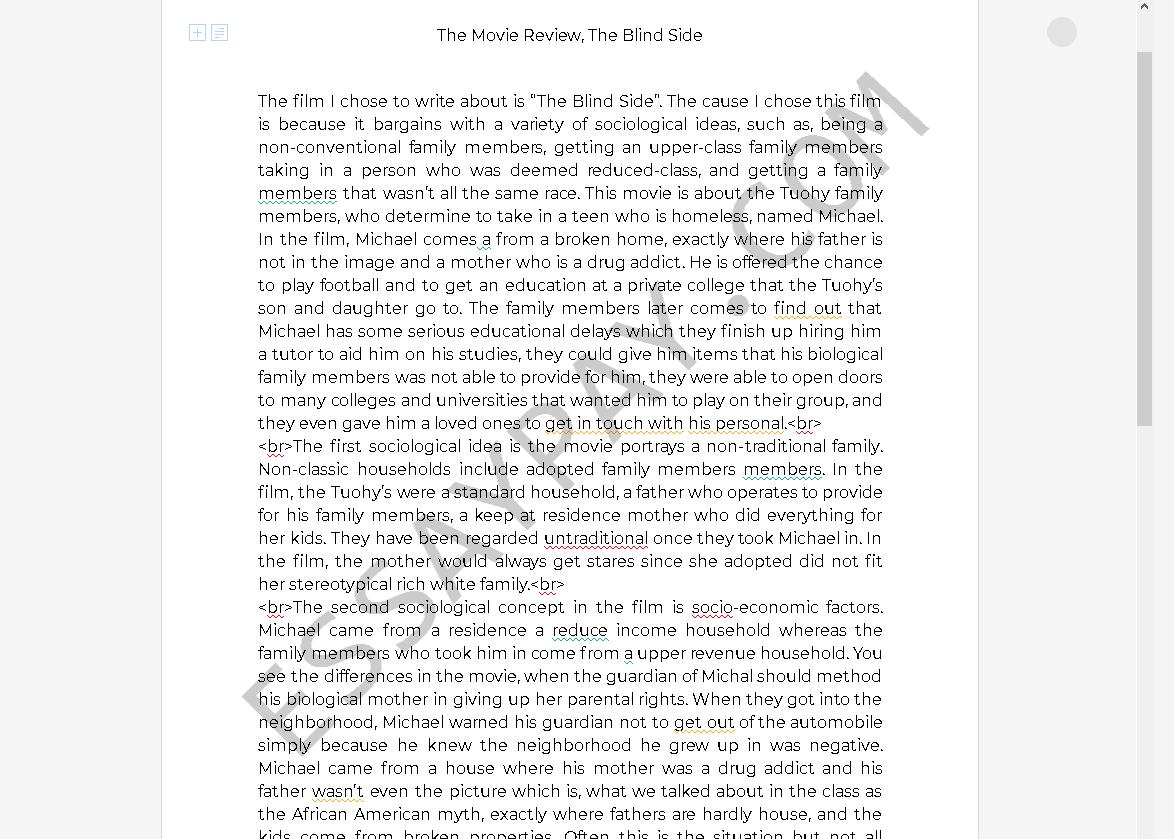 Blind side essay