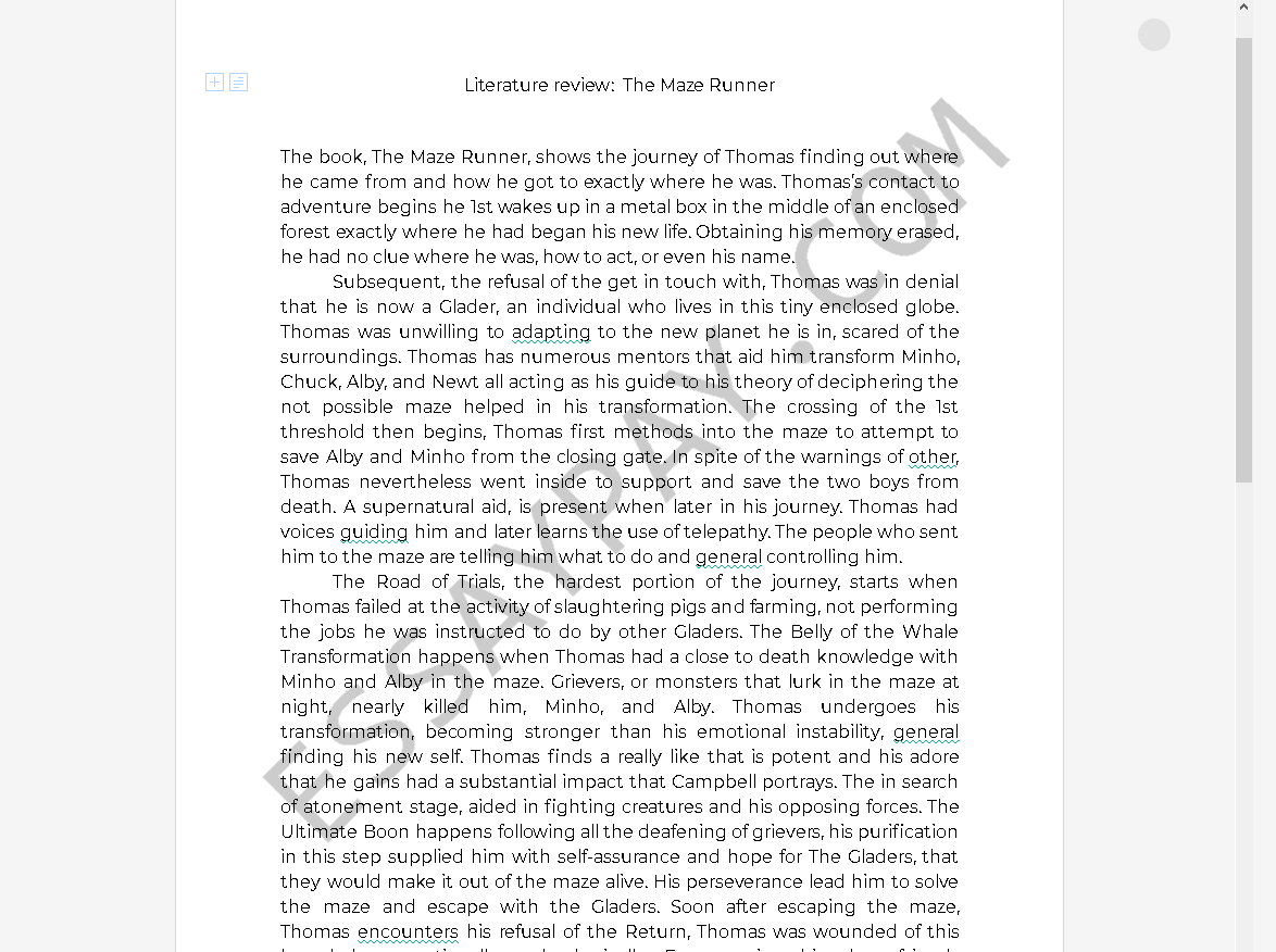 the maze runner essay - Free Essay Example