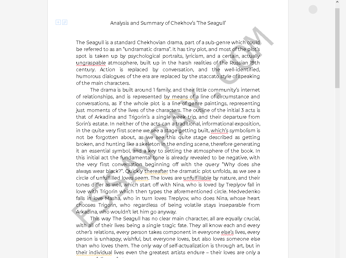 the seagull summary - Free Essay Example