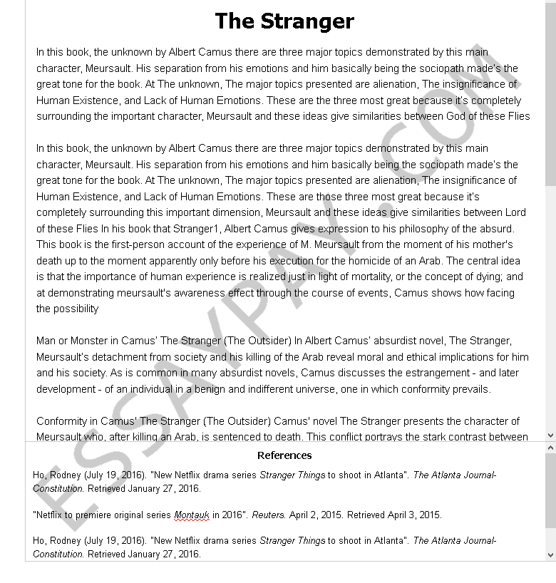 the stranger  - Free Essay Example