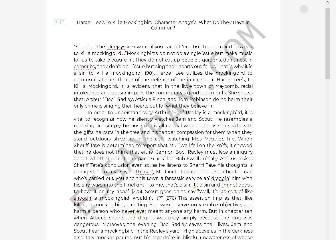 Practicum reflection essay