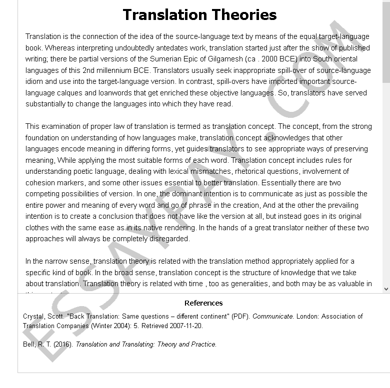 translation theories - Free Essay Example