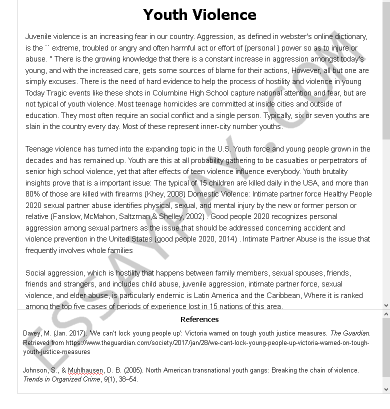youth violence  - Free Essay Example